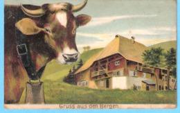 Gruss Aus Den Bergen-+/-1910-Schwarzwald-Kuh-Vache-Cow-Koe-Cachet D'Offenburg (Bade-Wurtemberg)-Carte En Relief - Offenburg