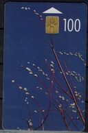 LATVIA 2000 PHONECARD WILLOWS USED VF!! - Lettland