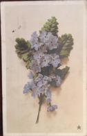 Cpa De 1912, Marque Etoile - Paris, N°4148, PRIMEVERE, écrite, Timbre - Flores