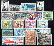 TAAF Petite Collection Neufs ** MNH 1959/1977. Bonnes Valeurs. TB. A Saisir! - Französische Süd- Und Antarktisgebiete (TAAF)