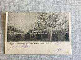 MAASEIK 1903  MAESEYCK PENSIONNAT DES RELIGIEUSES URSULINES  PRAIRIE - Maaseik