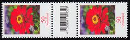 3535 Zinnie 50 Cent Aus 500er-Rolle, Paar Mit Nr, Codierfeld, Ohne Nr. ** - BRD