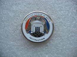 Pin's Militaire Du 8e Hussards à ALTKIRCH (Dépt 68). Caudium Animar In Actis Instruction - Militaria