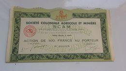 SCAM Coloniale Agricole Et Miniere (100 Francs) Capital 49,5 Millions - Actions & Titres