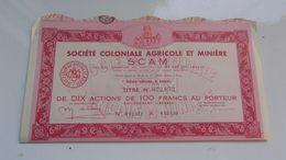 SCAM Coloniale Agricole Et Miniere (titre De 10 Actions) - Actions & Titres