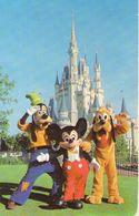 B 3498 - Disney, Topolino, Pippo, Pluto - Disneyworld