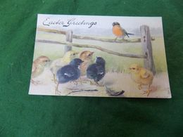 VINTAGE GREETINGS: EASTER Birds Of A Feather Art K West Tuck Oilette - Pasqua