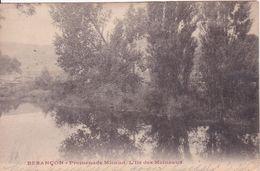 25-Besançon Promenade Micaud L'Ile Des Moineaux.. - Besancon