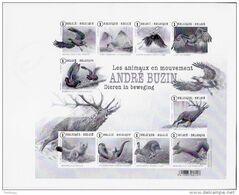 Zwart-Wit Velletje Andre Buzin - Black-and-white Panes