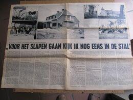 Rijkevorsel - Vermeire - 2 Pagina's 1969 - Rijkevorsel