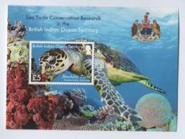 DA5 BIOT British Indian Ocean Territory 2016 ** Turtle / Territoire Britannique Tortue Marine - Britisches Territorium Im Indischen Ozean