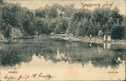 Ansichtskarte Gommern Partie Am Herthasee 1905 - Sin Clasificación