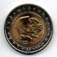 LUX 2005 Pièce 2 Euros  Henri Et Adolphe ... Grands Duc Du Luxembourg - Luxembourg