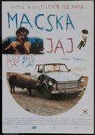 Macska Movie Film Carte Postale - Affiches Sur Carte