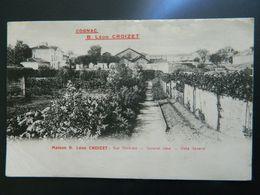 COGNAC         MAISON B LEON CROIZET    VUE GENERALE       (Attention Carte En 3 Feuilles, à Recoller) - Cognac