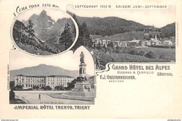 Italia  -  TRENTO, Imperial Hotel E Grand Hotel Des Alpes - Trento