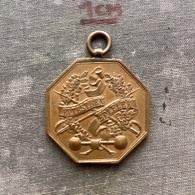 Medal Plaque Plakette PL000146 - Football Soccer Calcio Fencing Hungary Budapest  III. Kerületi Torna és Vívó Egylet - Soccer