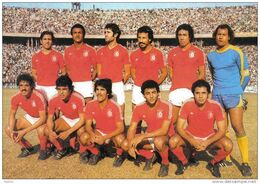 Carte Postale Sport Coupe Du Monde De Football1978  L'équipe De Tunisie  Très Beau Plan - Tunesien