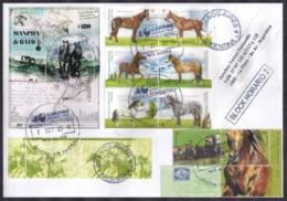 Argentina - 2019 - Lettre - Cheval - Horses - Caballos - Timbre Diverse - Argentina