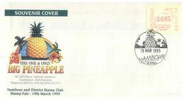 (E 4) Australia - FDC / Premier Jour - 1995 - Big Pineapple - Premiers Jours (FDC)