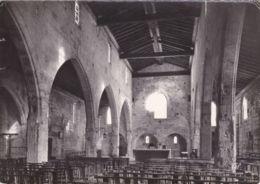 Aigues-Mortes - Eglise Notre-Dame Des Sablons - Intérieur - Aigues-Mortes