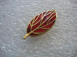 Pin's D'une Feuille De Couleur Rouge D'une Plante - Pins
