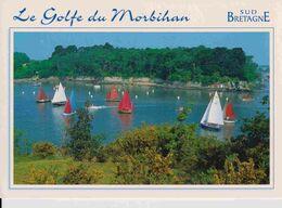 56 Golfre Du Morbihan, Rassemblement De Vieux Voiliers - France