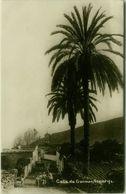 SPAIN - TENERIFE - CALLE DE GUIMAR - RPPC POSTCARD - 1900s ( BG8830) - Tenerife