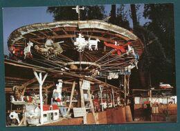 89 - DICY - La Fabuloserie - Art Hors-les-Normes - Art Brut - Le Manège De Petit Pierre - Autres Communes