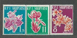 Albania Correo 1961 Yvert 555/7 Mnh ** Flora - Albanien