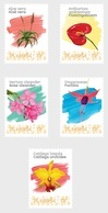 M ++ CARIBISCH NEDERLAND ST EUSTATIUS 2020 BLOEMEN FLOWERS FLEUR BLUMEN  ++ MNH POSTFRIS - Niederländische Antillen, Curaçao, Aruba