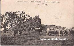 30 GENOLHAC - Concoules -(alès) Le Poncet - Troupeau De Moutons Et Chevres Au Paturage Goat - Sonstige Gemeinden