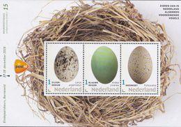Nederland - Eieren Van In Nederland Algemeen Voorkomende Vogels - Zilvermeeuwblauwe Reiger/meerkoet - MNH - Velletje 15 - Holanda