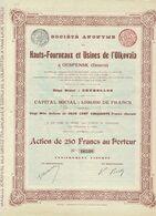 Titre Ancien - Hauts Fourneaux Et Usines De L'Olkovaïa  à Ouspensk (Donetz) -Titre De 1897 - Russie