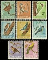 Albanien 1964 - Mi-Nr. 849-856 ** - MNH - Vögel / Birds - Albanien