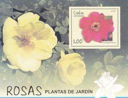 Cuba Hb 231 - Blocks & Sheetlets