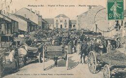 52) MONTIGNY-LE-ROI : Hôpital Et Foire Aux Porcs - Marché Aux Porc (1909) (AW) - Montigny Le Roi