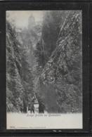 AK 0529  Lange Brücke Bei Gutenstein - Verlag Ledermann Um 1900-1910 - Gutenstein