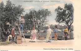 CPA - Portugal, ALENTEJO, Apanha Da Azeitona - Cueillette Des Olives, Olive Harvest - Portogallo