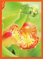Australien 2013 Mi.Nr. 3883 , Greeting Orchid - Maximum Card - First Day Of Issue  5.February 2013 - - Cartas Máxima