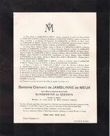 JAMBLINNE Marie SLINGENEYER De GOESWIN Baronne Clément De JAMBLINNE De MEUX 74 Ans 1939 Famille ULLENS De SCHOOTEN - Décès
