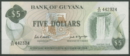 Guyana 5 Dollars 1989, Wasserfall, KM 22 E Kassenfrisch (K533) - Guyana
