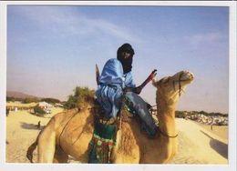 MALI - AK 382892 Chamelier Touareg - Mali