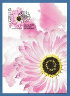 Australien 2011 Mi.Nr. 3532 , Xerochrysum - Maximum Card - First Day Of Issue 8.March 2011 - Cartas Máxima