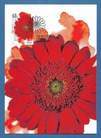 Australien 2011 Mi.Nr. 3530 , Gerbera - Maximum Card - First Day Of Issue 8.March 2011 - Cartas Máxima