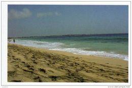 Cape Cabo Verde Sal Island Santa Maria - Cape Verde