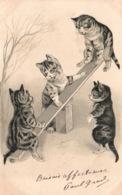 Animaux Humanisés - Groupe De Chats Jouant Sur Une Balançoire - Carte Gaufrée 1902 - Cats