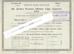 Certificat D'actions Ordinaires - Exploration Du Cuivre Du Nord Du Transvaal - 100 Actions 1949 (b281) - Mines