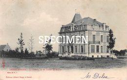 LE Château De Mr Fallon De Keyser - Destelbergen - Destelbergen
