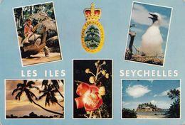 Seychelles Island Vedute Tartaruga Fiori Palme - Seychelles